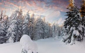 лес, снег, зима, горы, ёлки, сугробы, облака