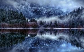 diablo lake, озеро Дьябло, зима, лес, отражение