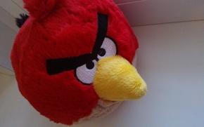 uccelli arrabbiato, giocattolo, rosso, luminoso
