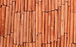 spices, cinnamon, texture