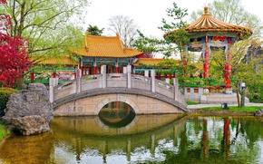 chinese garden, switzerland, switzerland, park, pond, bridge, arbor