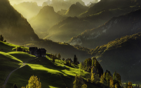 Mountains, light, home, forest