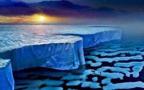 романтика апокалипсиса, льды, льдины, лед, животное, олень, человек, море, закат, стена
