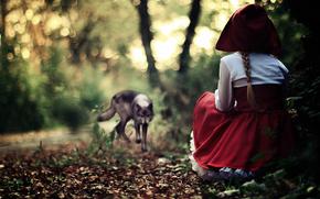 rosso, cuffia, vestire, Sarafan, ragazza, foresta, grigio, lupo