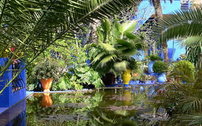 giardino, Marocco, marrakech jardin majorelle