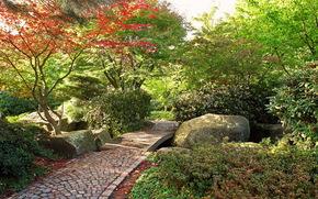 Garden, Germany, Hamburg, alter botanical gardens
