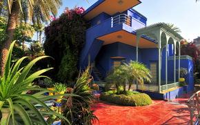 giardino, Marocco, marrakech, Jardin Majorelle