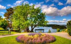 Norvegia, Bergen, aiuola, riposo