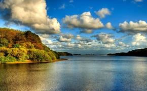 fiume, nuvole, foresta, paesaggio
