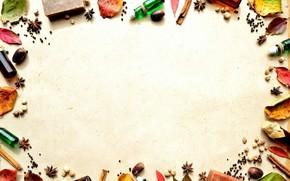 bubbles, leaves, Berries, cinnamon, star anise