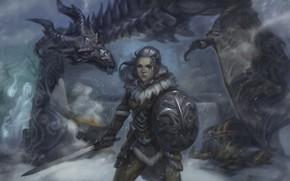 арт, девушка, дракон, сундук, снег, дух, меч, щит