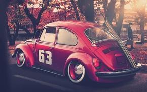Volkswagen, scarafaggio, Sintonia, Sci, autunno, Volkswagen