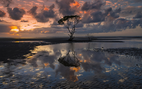 Australia, Queensland, cielo, las nubes, las nubes, rbol, agua, reflexin, tarde, lizzie fotografa