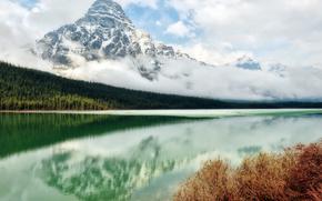 湖, 森林, 山, 云