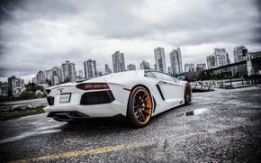 Lamborghini, Aventador, bianco, vista posteriore, asfalto, pozzanghere, ponte, cielo, nuvole, edificio, citt, Lamborghini