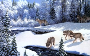 painting, animals, Wolves, Wolf Pack, river, snow, Winter, fairy-tale forest, Trees, frost
