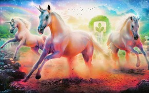 кони, бег, цвета, камни, река, радуга, единороги, эмблема, облака, птицы, звёзды