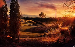 Hills, sunset, Pipe, Deer, zyayts, Trees, glow