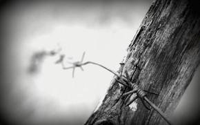 fence, mood, wire, B / W