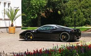 Ferrari, Italia, nero, vista laterale, Unit, aiuola, Ferrari