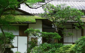 home, Asia, Garden, Trees, greens, moss, roof, tile