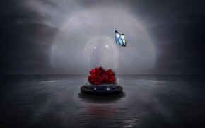 бабочка, цветок, фон, стиль