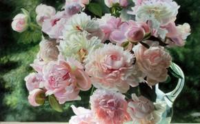 immagine, natura morta, fiori, Peonie, caraffa, estate, luce, tenerezza