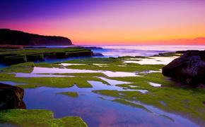 moss, stones, sunset, sea, landscape