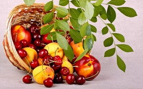 fruit, Berries, food, peaches, cherry, basket, basket, summer, nature, branch, leaves