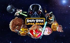 star wars, Angry Birds, Darth Vader, Luke Skywalker, Obi-Wan Kenobi, Han Solo, Chui, Droids, La Morte Nera, Millennium Falcon