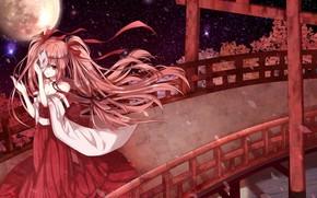 girl, view, yukata, bridge, sakura, night, moon, Star, Vocaloid