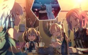 swordsman online, Kirito, Asuna, Sinon, Lizbeth, Silica, suguha, Girls, cup, bottle