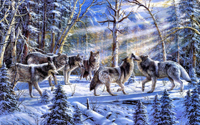 Winter, forest, flock, Wolves, Art, picture