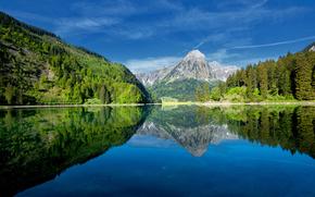 bosque, Montaas, lago, cielo