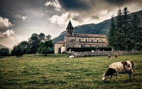 пейзаж, коровы, трава, деревья, здание