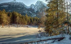 冬, 川, 山地, 森, 木, ブッシュ