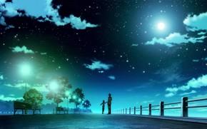 арт, аниме, мужчина, мальчик, звезды, ночь, небо, фонари, лавки, деревья, свет, мост, облака
