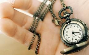 часы, рука, марко, стрелки, цифры