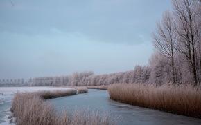 川, 冬, 自然