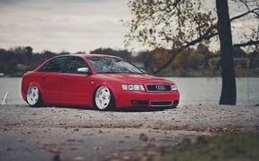 Audi, autumn, river, Audi