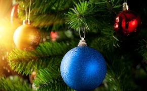 palla, blu, rosso, oro, ramo, abete, Capodanno, Natale, Capodanno