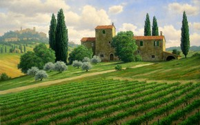 picture, landscape, Italy, field, home, Trees, cypresses, Hills, Vineyards