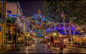 Stati Uniti d'America, casa, ca Anaheim Disneyland, ghirlanda, strada, notte