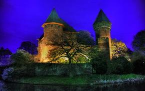 ドイツ, クレーフェルトブルグリン, 木, 夜