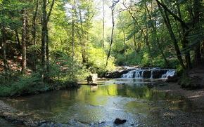 ro, Vodopad.Les, cascadas du herisson, Francia, Franche-Comte, Los rboles