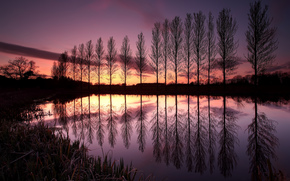 United Kingdom, England, Trees, lake, reflection, evening, sunset, sky, clouds