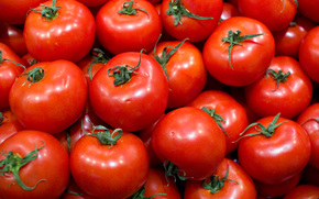 tomatoes, vegetables, salada, tomate, red, tomatoes, vegetables, red