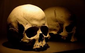 死, 頭蓋骨