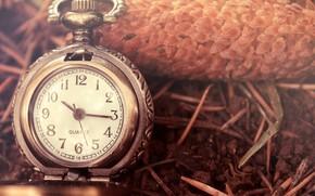 часы, макро, цифры, стрелки
