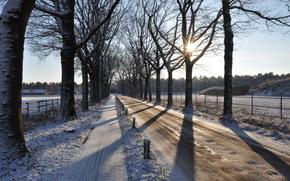 strada, inverno, paesaggio